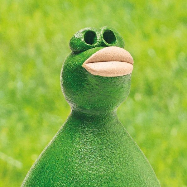 """Frosch """"Freddy Frog"""""""