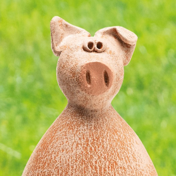 """Schwein """"Chop Säu"""""""